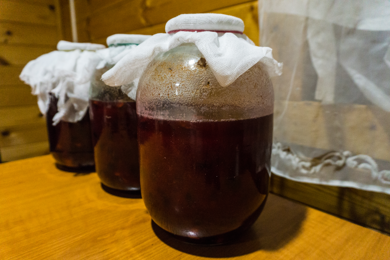 Вино из терна 3