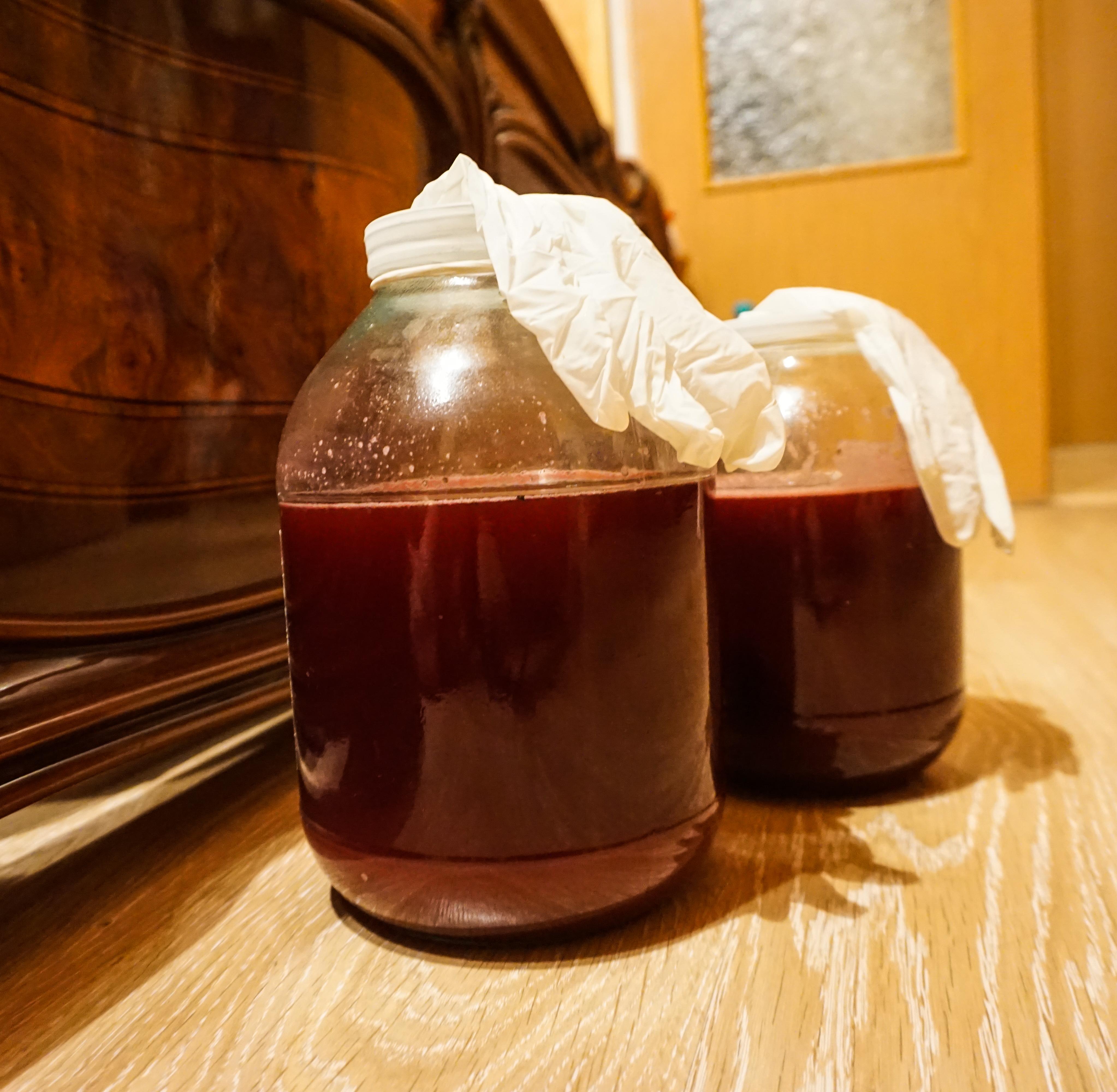 Вино из терна 4