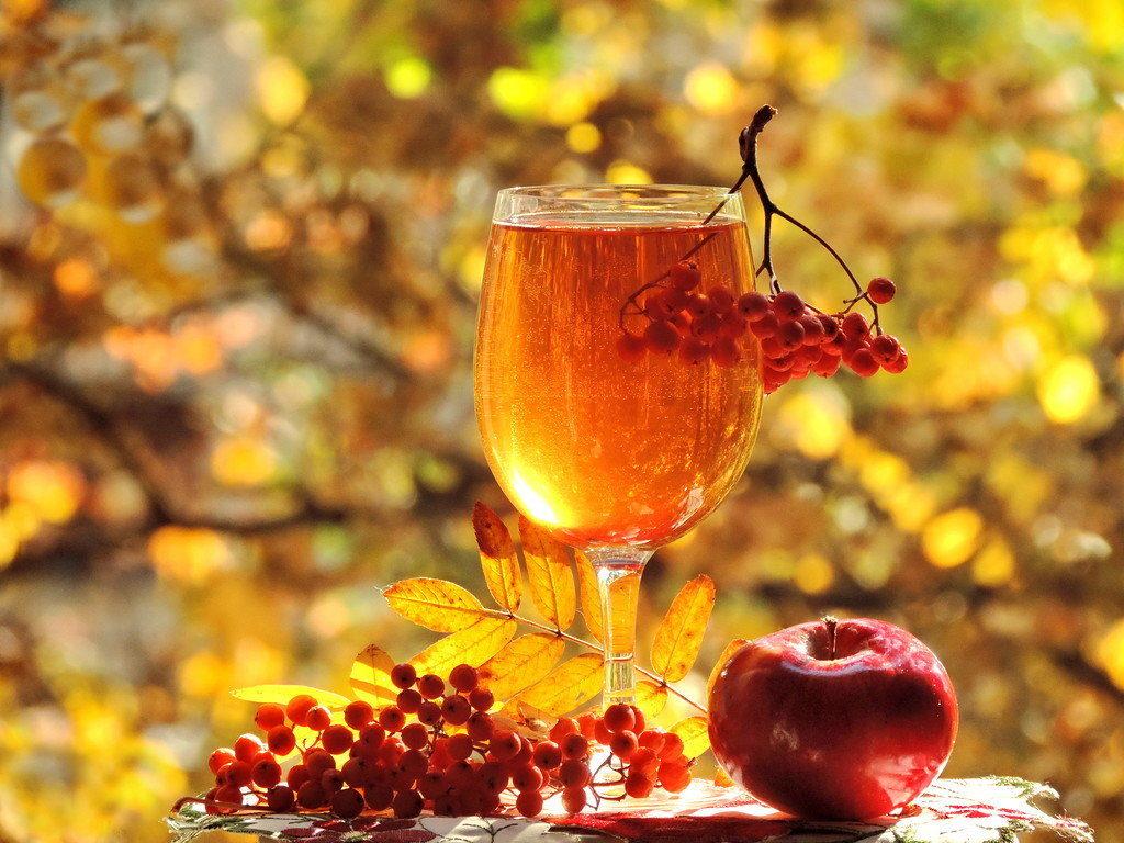 вино из рябины