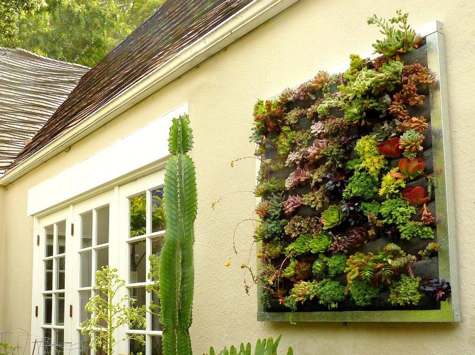 вертикальный сад, пример 1