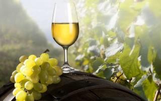 Как лучше сделать домашнее вино из белого винограда