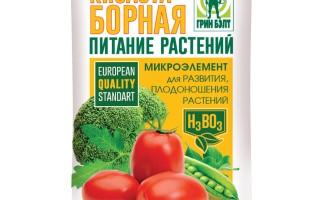 Как и когда лучше опрыскивать помидоры борной кислотой