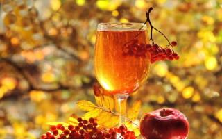 Вкусное и полезное вино из рябины в домашних условиях