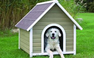Как сделать красивую и теплую собачью будку