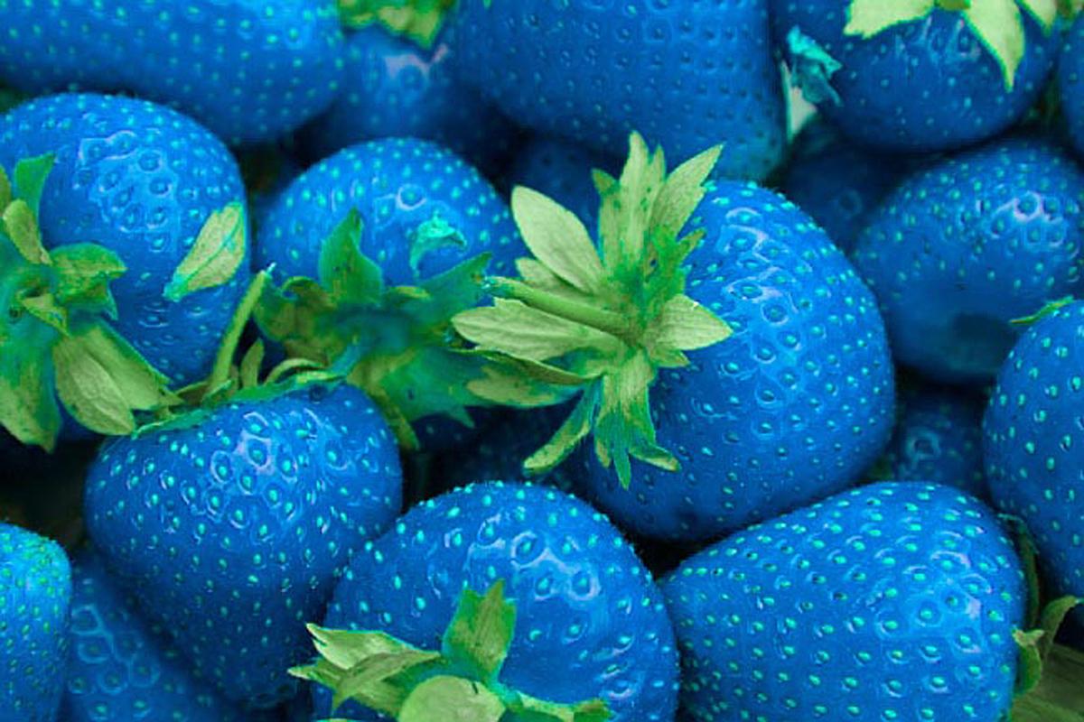 голубая клубника