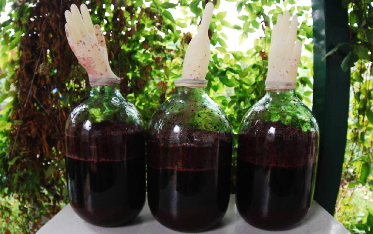 вино из компота