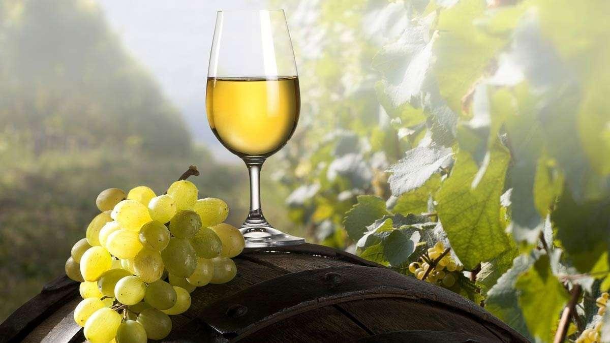 вино из белого винограда